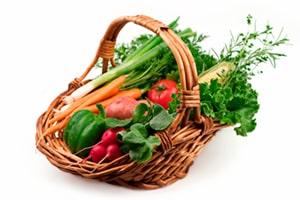community garden insurance